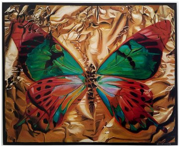 Butterfly I, 2015 / 102cm x 127cm / oil on canvas